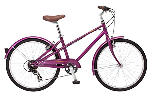 Schwinn Mifflin 24' Wheel Hybrid Bicycle, Magenta, One Size