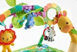 Fisher-Price Rainforest Music Lights Deluxe Gym