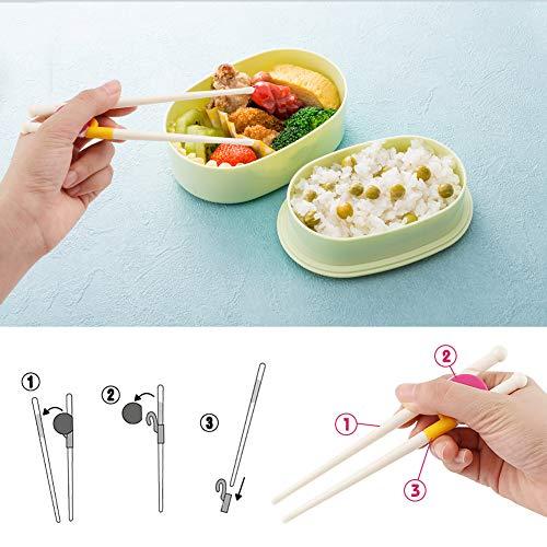 HAKACC Kid Training Chopsticks, 2 Pair Childrens Chopsticks Learning Chopsticks for Kids Children