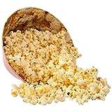 Present Time Popcorn Print Melamine Bowl, Large