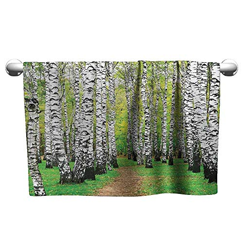 DUCKIL Floral Hand Towels Farm House Decor Collection Pathway in Birch Grove Forest Early Fall Scene Print Bathroom Towel 14 x 14 inch Yellowgreen Olive Peru
