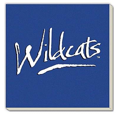CounterArt Set of 4 Absorbent Coasters, Kentucky-Wildcats