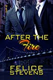 After the Fire (Through Hell and Back Book 2)