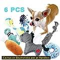 BUIBIIU Dog Toys, Dog Teething Toys Best Puppy Chew Toys Dog Chew Toys Squeaky Toys Balls