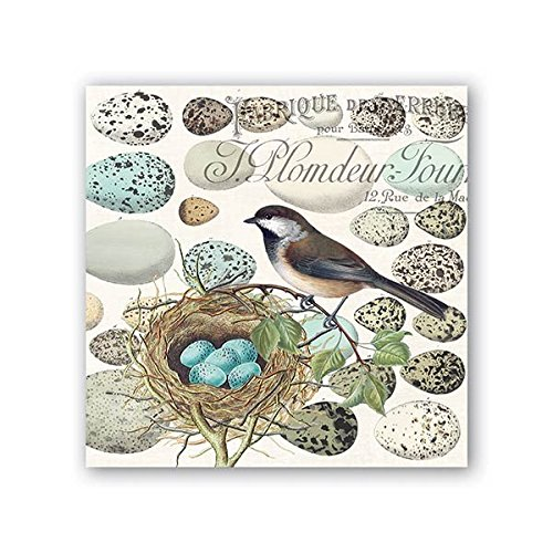Michel Design Works 20 Count 3-Ply Paper Cocktail Napkins, Nest & Eggs