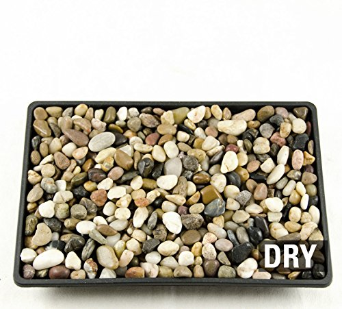 3 Lbs Decorative Pebbles for Bonsai Humidity Tray / Bonsai Tree Top Dressing