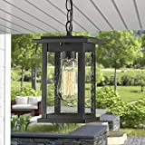 Emliviar Outdoor Pendant Lights for Porch, 1-Light