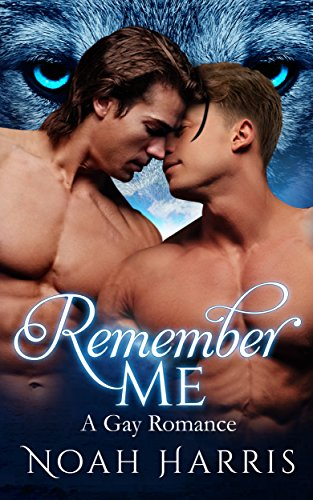 Remember Me: A Gay Romance (Paranormal Shifter - M/M NAVY SEAL Book 6)