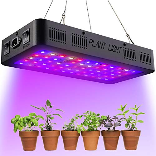 Grow Led Lights For Cannabis in US - 4