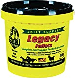 RICHDEL 784299540507 Legacy Pellets Joint Support for...