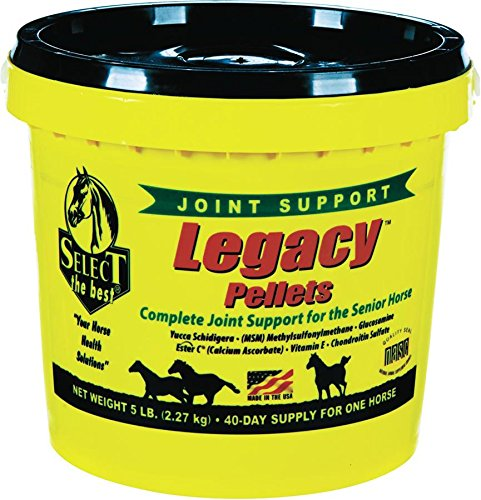 RICHDEL 784299540507 Legacy Pellets Joint Support for Senior Horses, 5 lb by RICHDEL