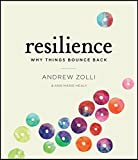 Book cover for Resilience: Why Things Bounce Back