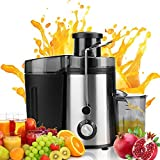 juicer non electric - Juicer Juice Extractor High Speed for Fruit and Vegetables Dual Speed Setting Centrifugal Fruit Machine Powerful 350 Watt with Juice Jug, Premium Food Grade Stainless Steel