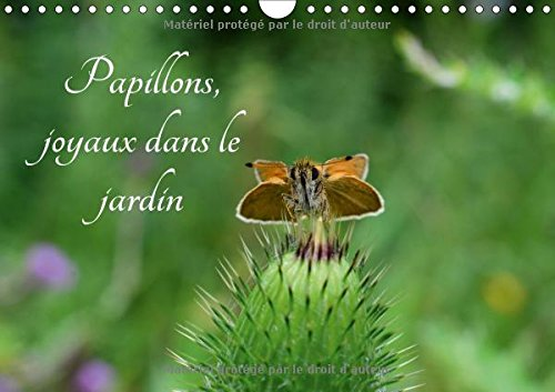 Papillons, Joyaux Dans Le Jardin 2017: Des Papillons Dans Les Jardins De L'europe (Calvendo Nature) (French Edition) by Calvendo Verlag GmbH