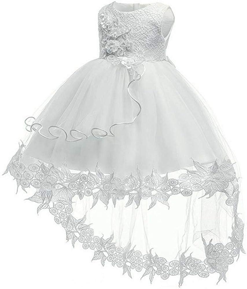 LZH Baby Kleinkind Spitzenkleid M/ädchen Erste Taufe Elegante Stickerei Hochzeit Blume Brautjungfer Kleider
