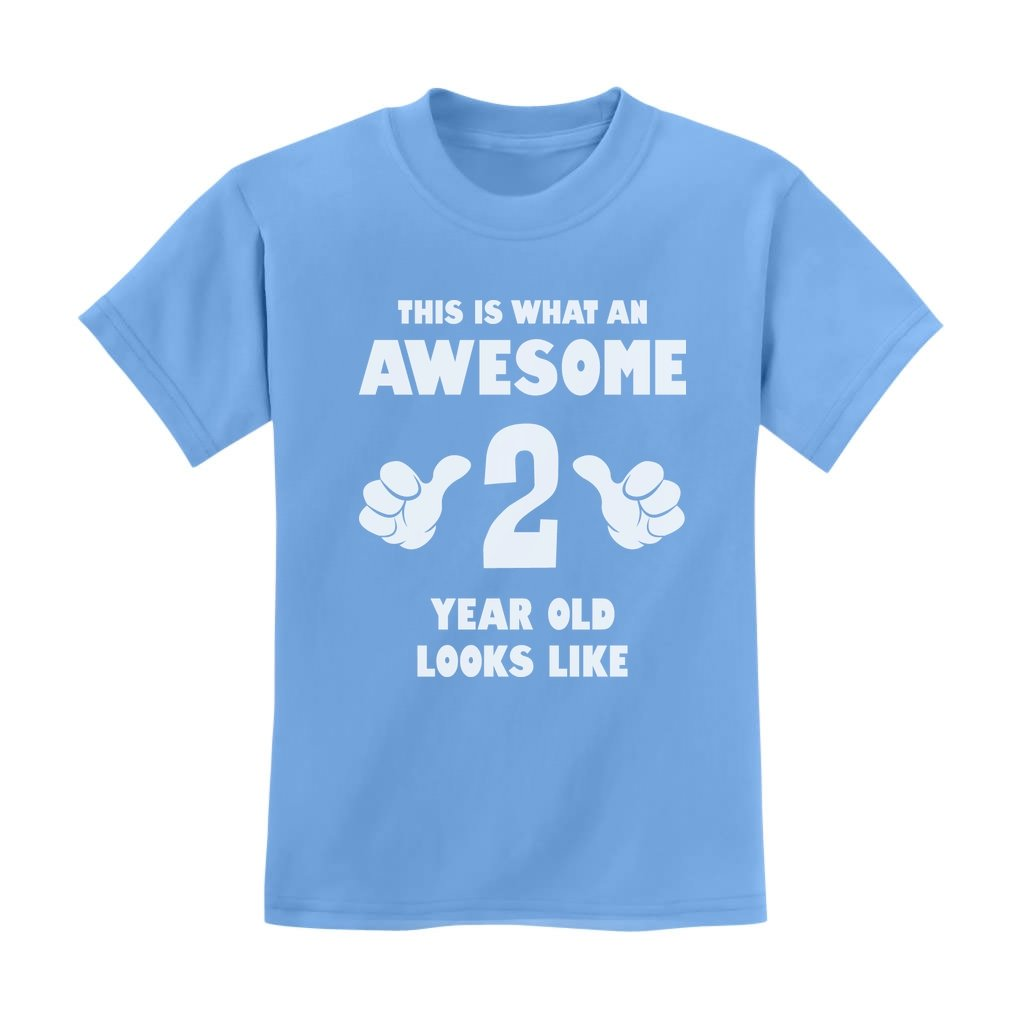 This Is What an Awesome 2 Year Old Looks Like Birthday Funny Novelty T-Shirt G0PMMlMgm