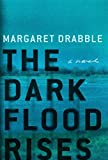 The Dark Flood Rises: A Novel