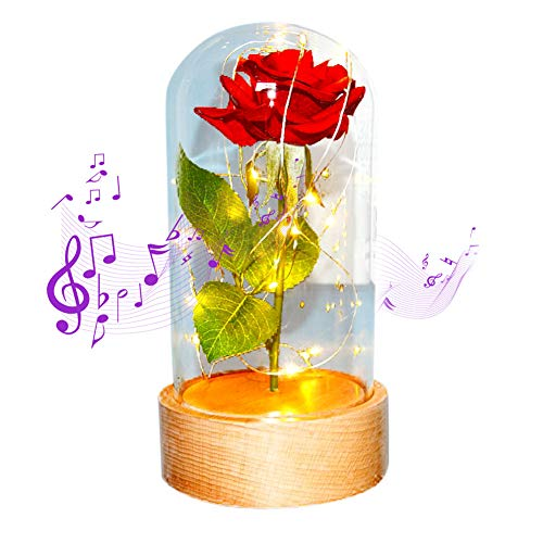 Beauty and The Beast Rose Kit, Artificial Red Silk Rose Flower with LED Light String in Glass Dome, with Rotating Wooden Base and Music, Christmas Birthday Anniversary Valentine's Day Gifts