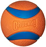 Chuckit! Large Ultra Ball 3-Inch, 1-Pack