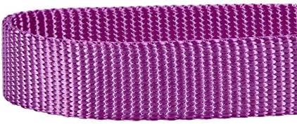 Blueberry Pet 1,5cm x 150cm Small Classique Solide Violet Nylon Laisse pour Chien. Collier et Harnais Assortis Vendus séparément