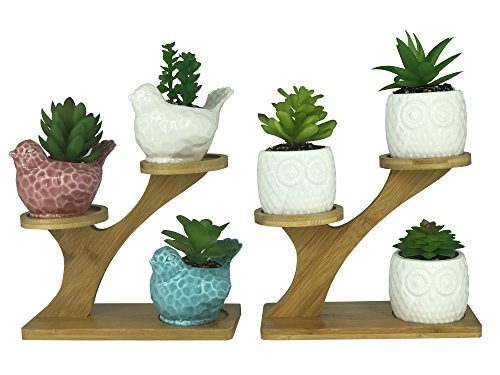 Cheap 3 PCS Bird Succulent Pots,3 PCS Owl Shaped Ceramic Flower Pot Planter, with 2 PCS 3-Tier Treetop Shaped Bamboo Flowerpot Stands Holder for Home Garden Office Desktop Decoration (Plants Not Included)