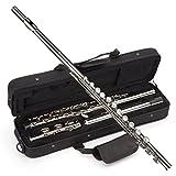 Windsor MI-1002 Student Nickel Plated Flute With Split E Key Includes Hard Case