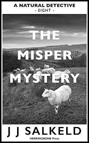 The MISPER Mystery (A Natural Detective Book 8) by [Salkeld, J J]