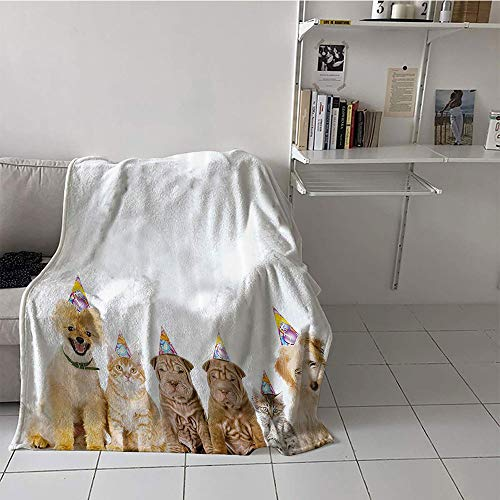 Khaki home Children's Blanket Beach Blanket for Sofa Couch Bed (35 by 60 Inch,Birthday Decorations for Kids,Shelter Dogs Terrier Cats with Cone Hats Party Theme Image,Multicolor