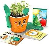 Kit educativo juguete didáctico para niños - Aprendizaje de vocabulario inglés español - Germinación de plantas comestibles - Maceta autorregable OC1009 - Kid planter SMART GARDEN naranja brilloso - No incluye semillas