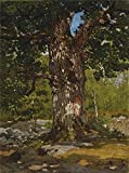 Oil Painting 'Claude Monet - The Bodmer Oak, 1865', 16 x 22 inch / 41 x 55 cm , on High Definition HD canvas prints is for Gifts And Bath Room, Home Office And Study Room Decoration, HD