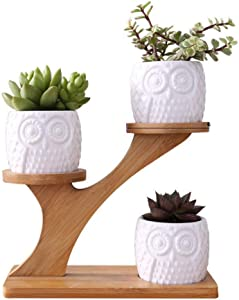 3pcs Owl Ceramic Succulent Pots with 3 Tier Bamboo Saucers Stand Holder, Ceramic Planter Flower Plant Pot with Drainage for Home Garden Decoration