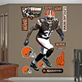 NFL Cleveland Browns Donte Whitner Big Wall Decal
