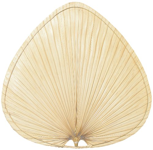 Fanimation ISP1 22-Inch Wide Oval Natural Palm Leaf Ceiling Fan Blade, Set of 5