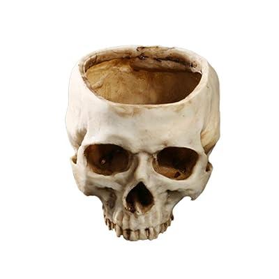 Yundxi Artificial Resin Human Skull Design Flower Pot Planter Container Skull Bowl for Home Bar Decoration (Style1) : Garden & Outdoor