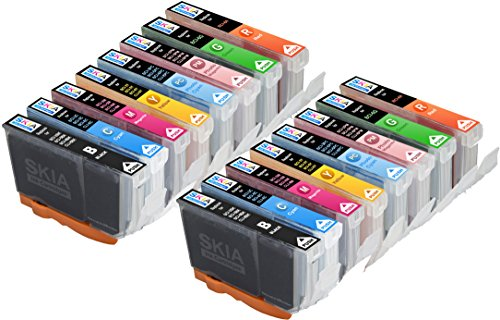 Skia 16 Pack BCI6 Replacement Ink Cartridges for Canon PIXMA iP8500 i9900