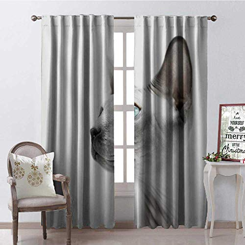 Hengshu Canadian Cute Sphynx Cat Side View Thermal Insulating Blackout Curtain Blackout Draperies for Bedroom W84 x L84