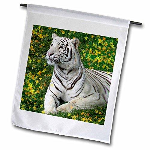 3dRose fl_4830_1 White Tiger Garden Flag, 12 by 18-Inch