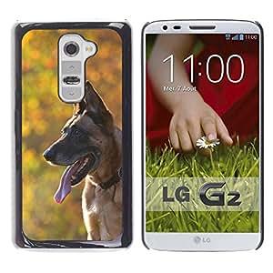 hello-mobile Etui Housse Coque de Protection Cover Rigide pour // M00137439 Perro de Malinois hojas de otoño Bosque // LG G2 D800 D802 D802TA D803 VS980 LS980
