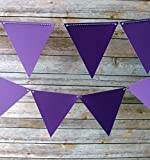 Quasimoon Purple Ombre Triangle Pennant Banner by PaperLanternStore