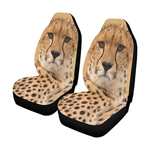 INTERESTPRINT Wildlife African Male Cheetah in Masai Car Front Seat Set of 2, Auto Seat Covers for ()