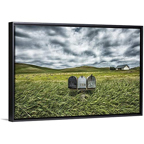 Scott Stulberg Floating Frame Premium Canvas with Black Frame Wall Art Print Entitled Mailboxes in Rural Area of The Palouse, Washington 30