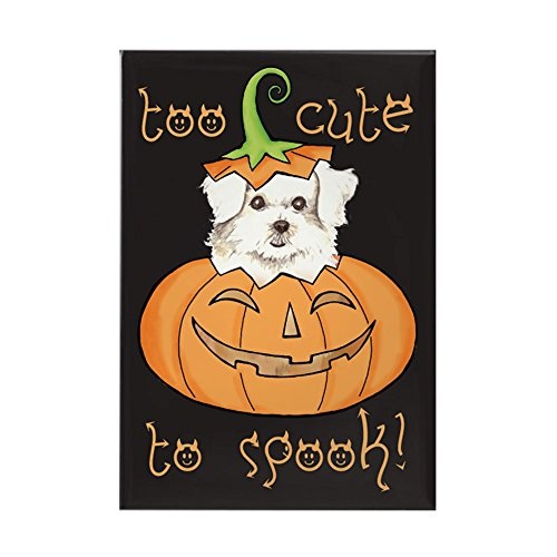 CafePress Halloween Maltese Rectangle Magnet Rectangle Magnet, 2