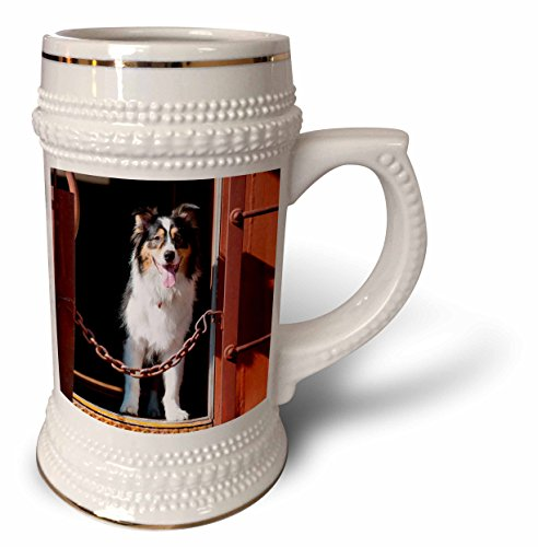 danita-delimont-dogs-australian-shepherd-in-a-train-car-22oz-stein-mug-stn-230324-1