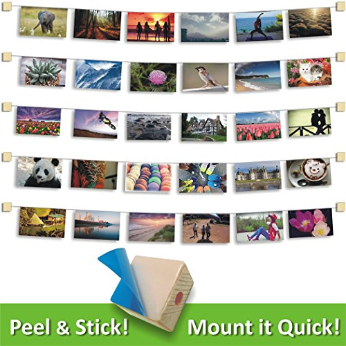 MW Photo & Artwork Display | Self Adhesive Hanging Photo Display | Modular Hanging Artwork Display | Adjustable Display for Photos | Natural Wood |10 Holders | 50 Clips | 20 ft White Twine