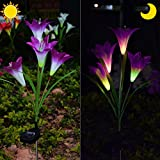 Cheap Chasgo Decorative Solar Garden Stake Light, Multi-Color Changing Solar Lily Flower Light Outdoor Garden Yard Art Decoration, Purple Solar Lily