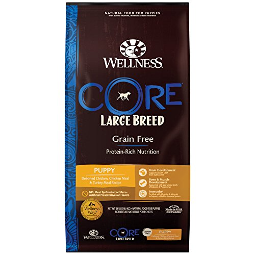Wellness Core Natural Grain Free Dry Puppy Food, Large Breed Puppy, 24-Pound Bag