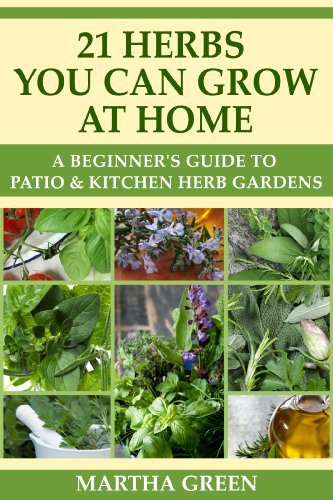 Superbe A Beginneru0027s Guide To Patio And Kitchen Herb Gardens: 21 Herbs You Can Grow  At