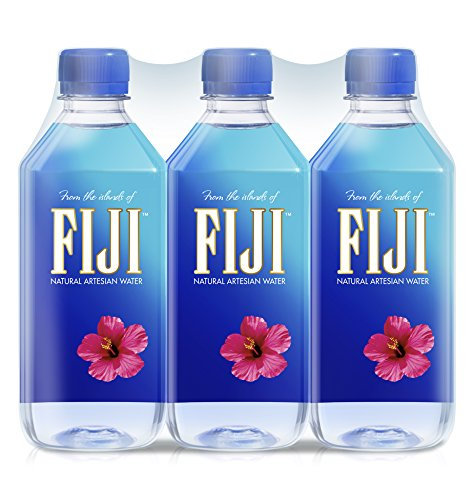 FIJI Natural Artesian Water, 16.9 Fl Oz (Pack of 6) - Fiji Natural Artesian Water
