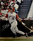 Tim Salmon Autographed Photo - 16x20 At Bat Big Swing - Autographed MLB Photos