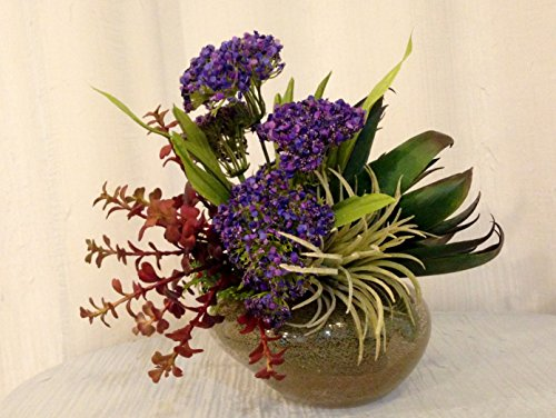 Agave Jade Plant and Queen Annes Lace Arrangement in